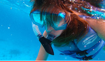 Top 5 Actividades Acuáticas Cancun