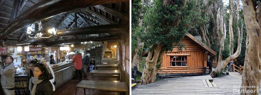 Bosque de arrayanes descubriendo destinos - Casitas en el bosque ...